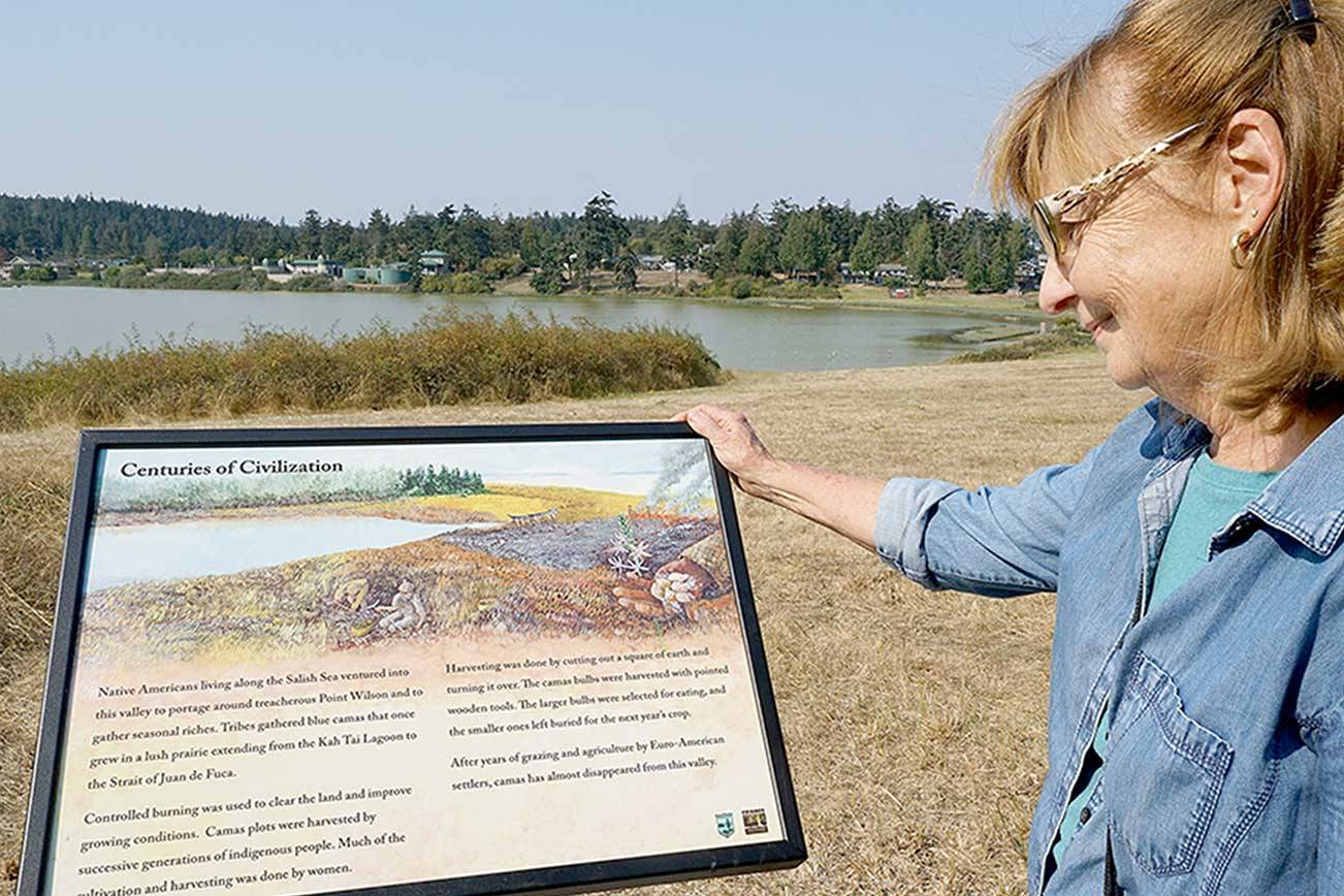 Interpretive panels reveal natural, cultural history at Chinese Gardens
