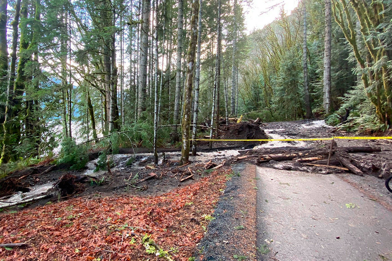 A landslide blocks safe passage along the Spruce Railroad Trail. Olympic National Park officials said that heavy rain was the cause. (Photo courtesy of Noel Carey)